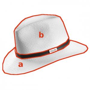 Forma del sombrero a: ala b: copa