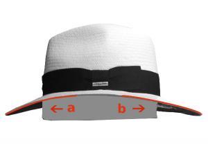 De lateral a: delantera hacia abajo b: trasera hacia abajo