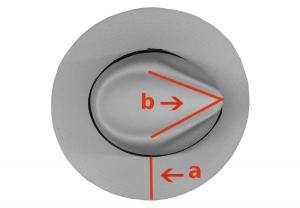 Desde arriba a: ala ancha b: copa en punta