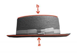 De lateral: a: ala plana b: copa plana